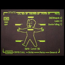 Fallout Pipboy Stats Screen